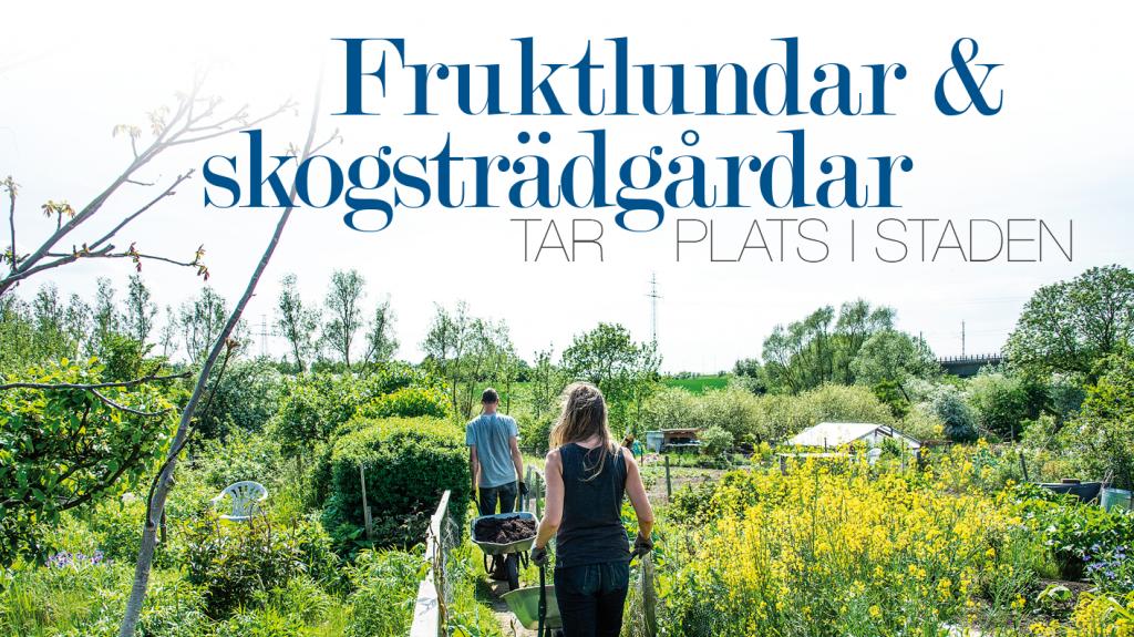 Fruktlundar & skogsträdgårdar tar plats i staden